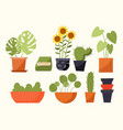 plant in pot concept vector image