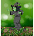 A scary witch above a trunk vector image vector image