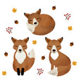 fall season with cute foxes vector image vector image