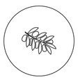 olive branch black icon in circle outline vector image vector image