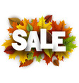 sale background with colorful leaves vector image vector image