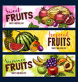 sketch fruit store banners farm fruits vector image vector image