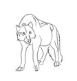 wolf stands lines vector image