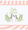 baby shower card with cute zebras couple vector image vector image