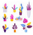 collection of decorative exotic tropical vector image vector image