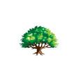 green creative argania tree logo vector image vector image