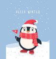 hello winter penguin christmas background vector image