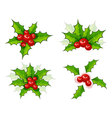 Holly leaves vector | Price: 1 Credit (USD $1)