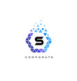 s blue hexagon letter logo with triangles vector image