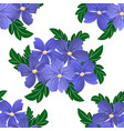 seamless flower pattern on white background vector image vector image