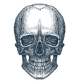 skull logo design template fresh death vector image vector image