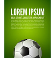 soccer ball on field design vector image