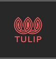 tulip logo abstract flower monogram style coral vector image