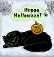 Card of Halloween cat and pumpkin with green eyes vector image vector image