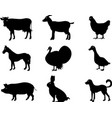 collection farm animals and livestock vector image vector image