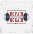 no pain gain - bodybuilding typography vector image vector image