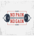 no pain no gain - bodybuilding typography for vector image