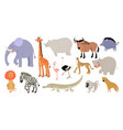 set funny animals and birds vector image vector image
