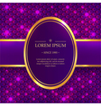 Shiny background with sparkles vector image vector image