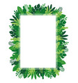 tropical leaves and plants rectangle frame vector image vector image