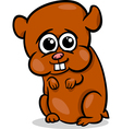 baby hamster cartoon vector image vector image
