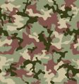 camouflage jungle vector image