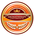 Citrus Essential Oil Aromatherapy Label vector image