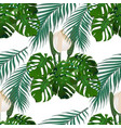 jungle green tropical leaf monster flowers and vector image vector image