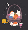 kittens sleep in a basket with balls threads vector image