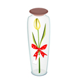 Yellow Tulip with Red Ribbon in Glass Bottle vector image