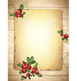 burnt paper with cranberries vector image vector image