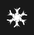 grunge isolate snowflake vector image vector image