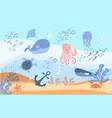 sea world dwellers concept vector image