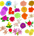 set of in hand drawn style roses vector eps 10 ill vector image vector image