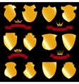 shields gold vector image