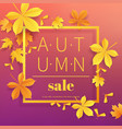 autumn sale vintage typography poster with gold vector image vector image