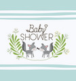 baby shower card with cute dogs couple vector image