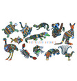 colorful tribal set of australian animals vector image