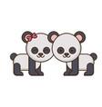 couple of panda bears icon vector image