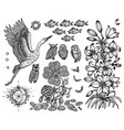 design set with stork lily fish and nature symbo vector image