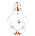 doctor chicken on white background vector image vector image
