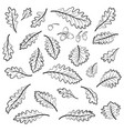 oak leaves and acorns pictograms vector image vector image