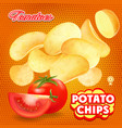 potato chips with red tomato advertising vector image vector image