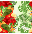 seamless texture tropical bird and hibiscus vector image vector image