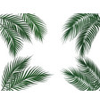 tropical dark green palm leaves on four sides set vector image vector image