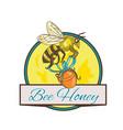 bee carrying honey pot circle drawing vector image