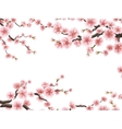 Blossom sakura for your design EPS 10 vector image