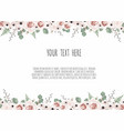 botanic card with wild flowers leaves spring vector image vector image