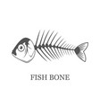 fish bone fish skeleton grey vector image vector image
