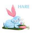 educational flashcard hare eating the carrot vector image vector image